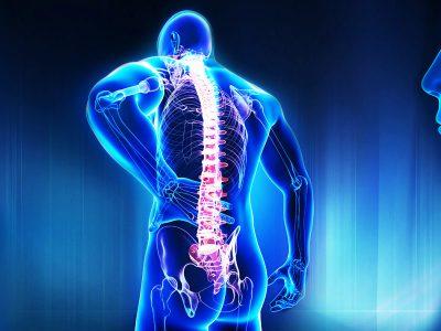 Ortopedik Medikal Ürünler