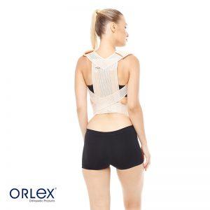 Orlex Standart Posturex Bandajı